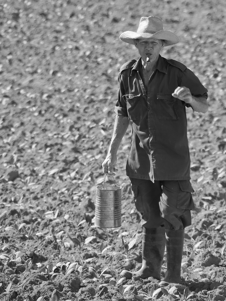 Seeding Farmer